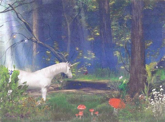 Enchanted Forest Original